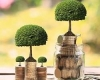 The Evolution of Private Equity in India