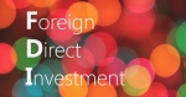 UAE's Outbound Investment in India