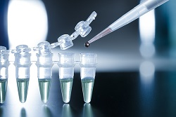 Stem Cell Research Law UAE Dubai