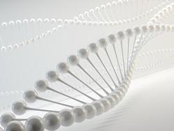Biotechnology Lawyers in Dubai and UAE